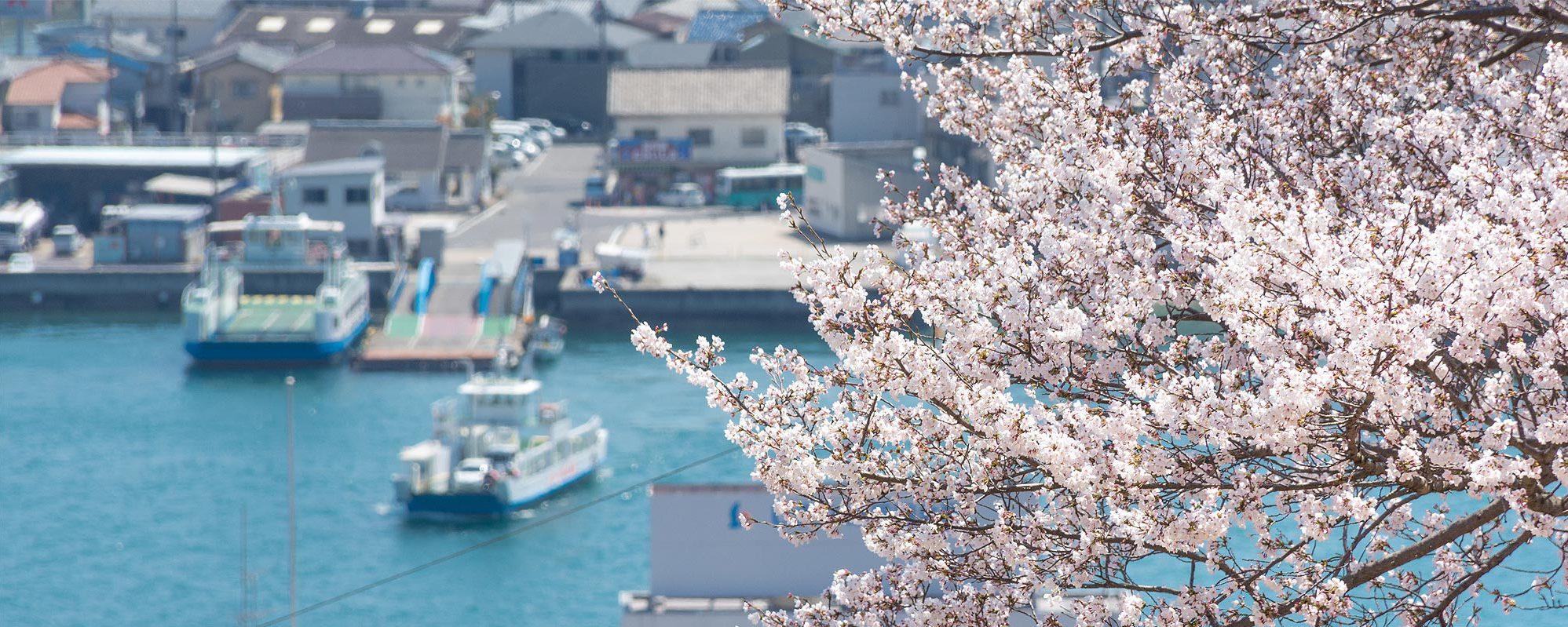 千光寺公園から見る桜越しの風景
